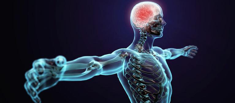 NEUROMUDULACIÓN - Estimulación neurorefleja